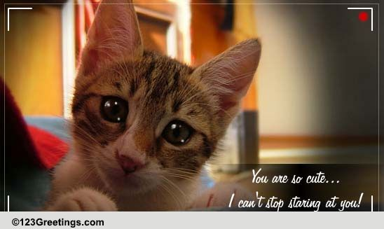 you are so cute  free cute etc ecards  greeting cards