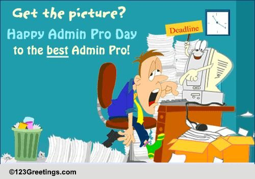 can u0026 39 t do without your admin pro  free fun ecards  greeting