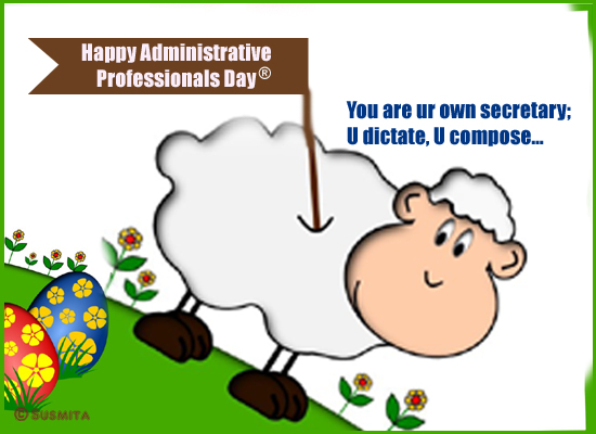 Cute Admin Pro Wishes!