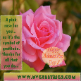 Admin Pro Day Pink Rose For Gratitude.