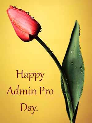 Admin Pro Day!
