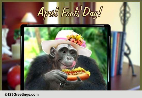 april fool u0026 39 s picture  free fun ecards  greeting cards