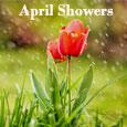 Lovely April Showers...