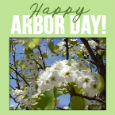 Home : Events : National Arbor Day 2019 [Apr 26] - Happy Arbor Day!
