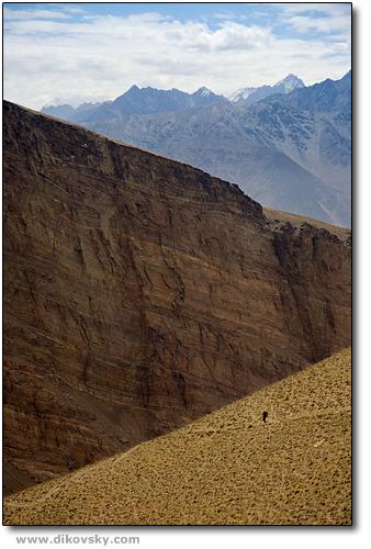 Canyon Nishgar.