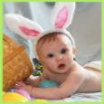 Baby Bunny Ears.