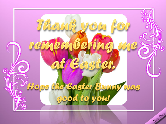hope easter bunny was good to you  free thank you ecards  greeting cards
