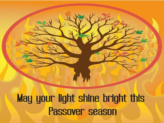 Wishes For A Special Passover.