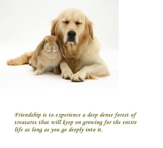 For Treasure In Friendship.