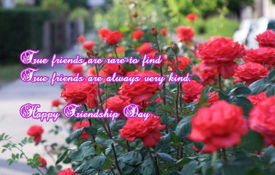 True Friends Are Always Very Kind.
