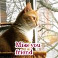 Miss You My Friend...