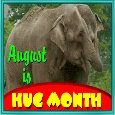 August Is Hug Month.