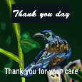 Thank You Day, Bird.