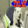 Work, Work, Work Like A Dog.