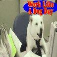 Home : Events : Work Like a Dog Day 2018 [Aug 5] - Work, Work, Work Like A Dog.