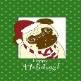 Pug Dog Funny Holiday Wishes.