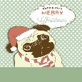 Funny Pug Dog Christmas Wishes!