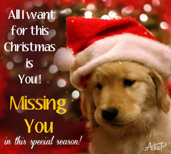 Missing Someone At Christmas Quotes: All I Want For Christmas Is You! Free Miss You ECards