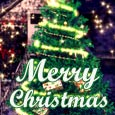 Have A Joyful Christmas..