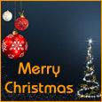 Spirited Christmas & Happy New Year!