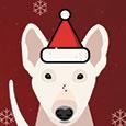 Wishing You A Christmas Full Of Fun!