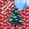 Magic Christmas Tree Light Day.