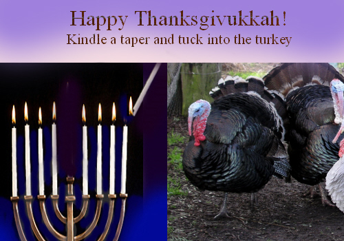 Happy Thanksgivukkah Taper And Turkey.