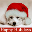 Home : Events : Happy Holidays  [Dec - Jan] - Message Of Peace & Joy For You...