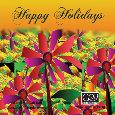Hope You Enjoy Your Holidays!