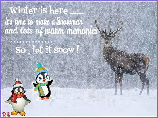 Some Cool Winter Fun...