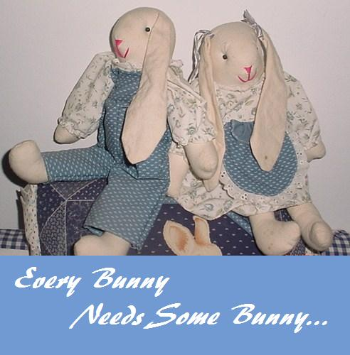 Every Bunny Needs Some Bunny.