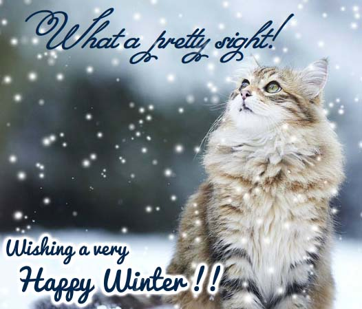 Send Winter Greetings!