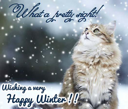 Beautiful Snow Raining Down  Free Happy Winter eCards