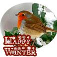 Beauty Of Winter Season...