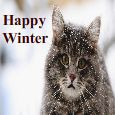 Home : Events : Winter  [Dec 21 - Mar 19] - Purr-Fect Winter Wishes To You!