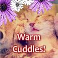 Warm Cuddles For My Sweetheart!
