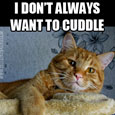 I Don't Always Want To Cuddle.