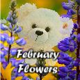 Home : Events : February Flowers 2018 [February] - Fairest Flowers Of February!