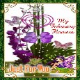 A February Flowers Day Card.