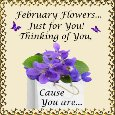 Home : Events : February Flowers 2018 [February] - Violets, Just For You...