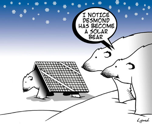 Solar Bear.