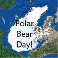 Polar Bear Day Fun!