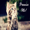 Promise Me!