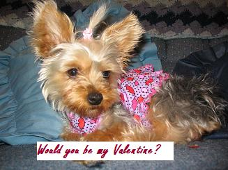 Would You Please Be My Valentine?
