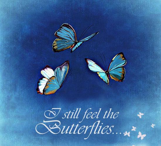 feeling butterflies  free happy valentine u0026 39 s day ecards