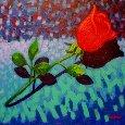 Valentine Rose.