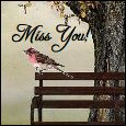 Wish You Were Here With Me!