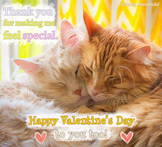 Thank You Valentine Cats.