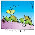 Mantis Spouce.