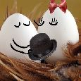 Your Warm Kisses!
